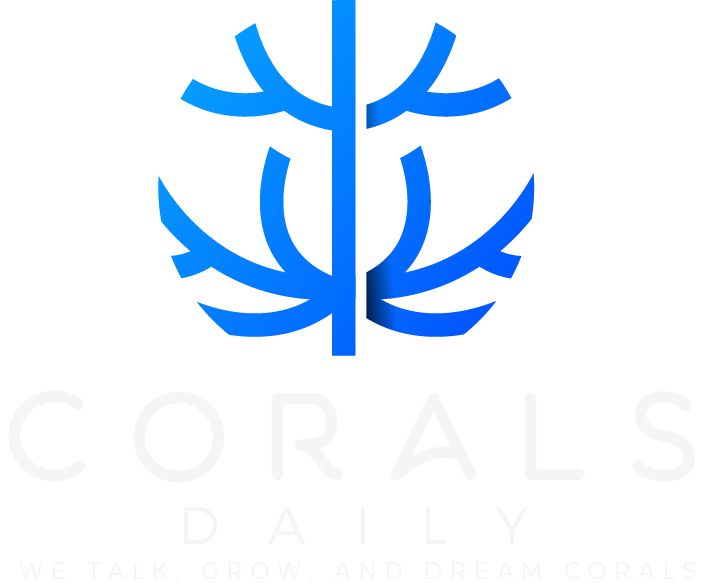 We Talk, Grow, and Dream Corals